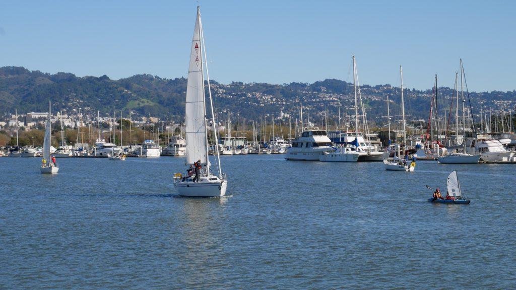 Busy Berkeley Marina