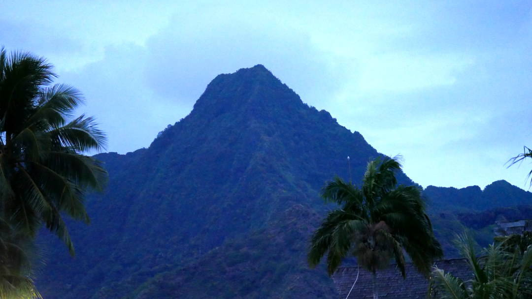 Mountain top with palm trees in forefront
